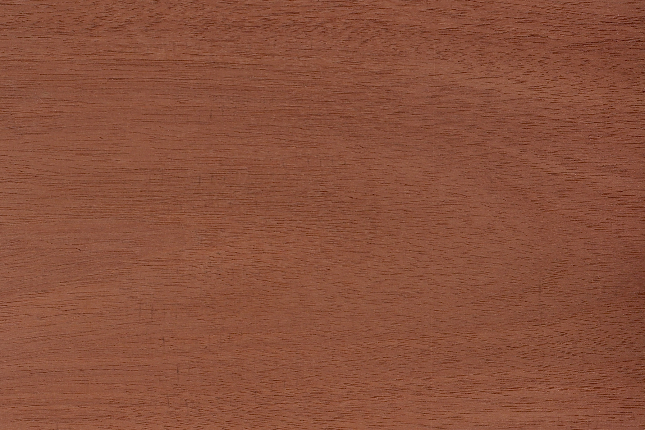 Exotic Wood Texture Pack